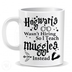 Hogwarts Was Not Hiring So I Teach Muggles Insted Mug