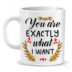 You are Exactly What I Want Mug
